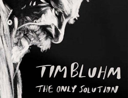 "New Tim Bluhm Single ""The Only Solution"""